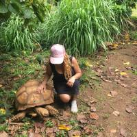 Kauai (My favorite FREE things to Do)